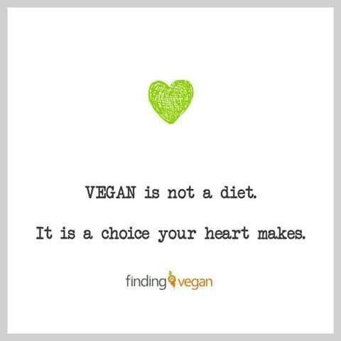 (1) #govegan - Cerca su Twitter #veganquotes (1) #govegan - Cerca su Twitter #veganquotes