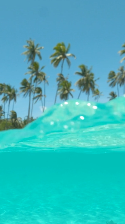 10 best reasons to go snorkeling
