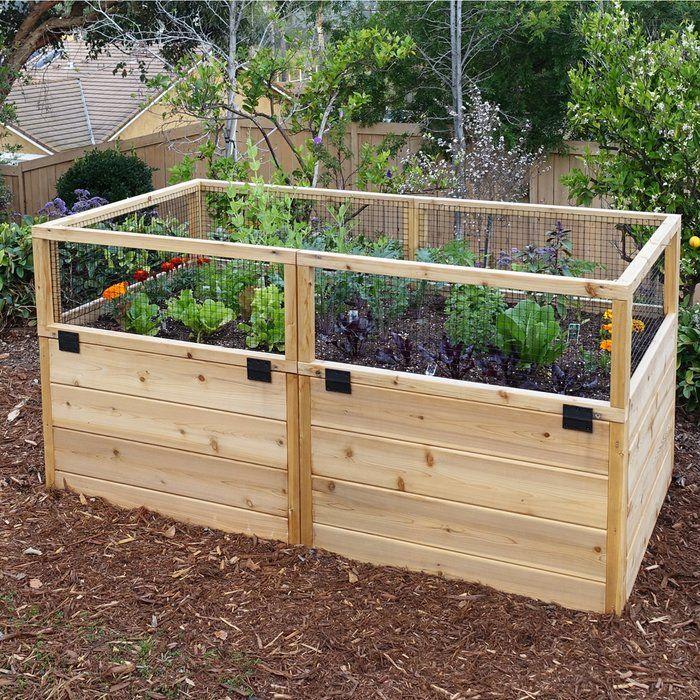 20 Brilliant Raised Garden Bed Ideas You Can Make In A: 6 Ft X 3 Ft Cedar Raised Garden Bed