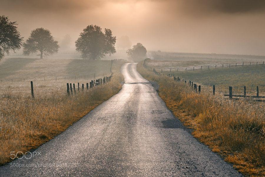 The Road by AdnanBubalo. Please Like http://fb.me/go4photos and Follow @go4fotos Thank You. :-)