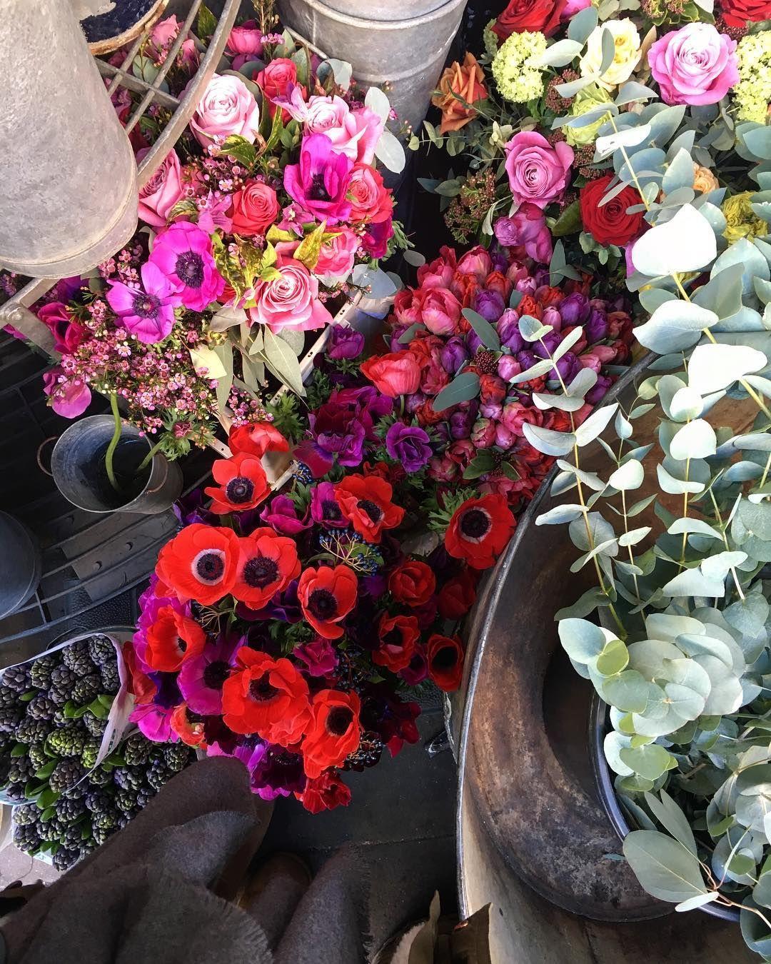 B E A U T I F L Flowers Qué Bonitas Las Amapolas Verdad Ayer Nos Tocaba Visita Libertylondon Creo Que Es De Tiendas Más