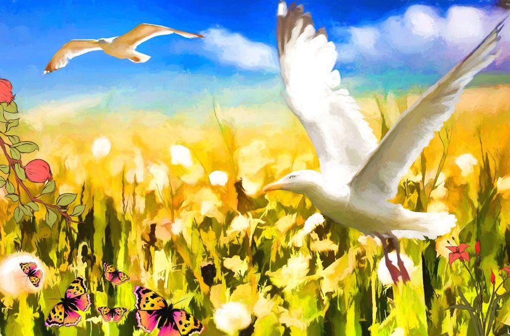 Enchanting Seagulls Wall Art Photos - Wall Art Collections ...