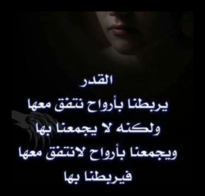 Pin By Fatimah Mohammed On فطوم Love Quotes Arabic Love Quotes Cool Words