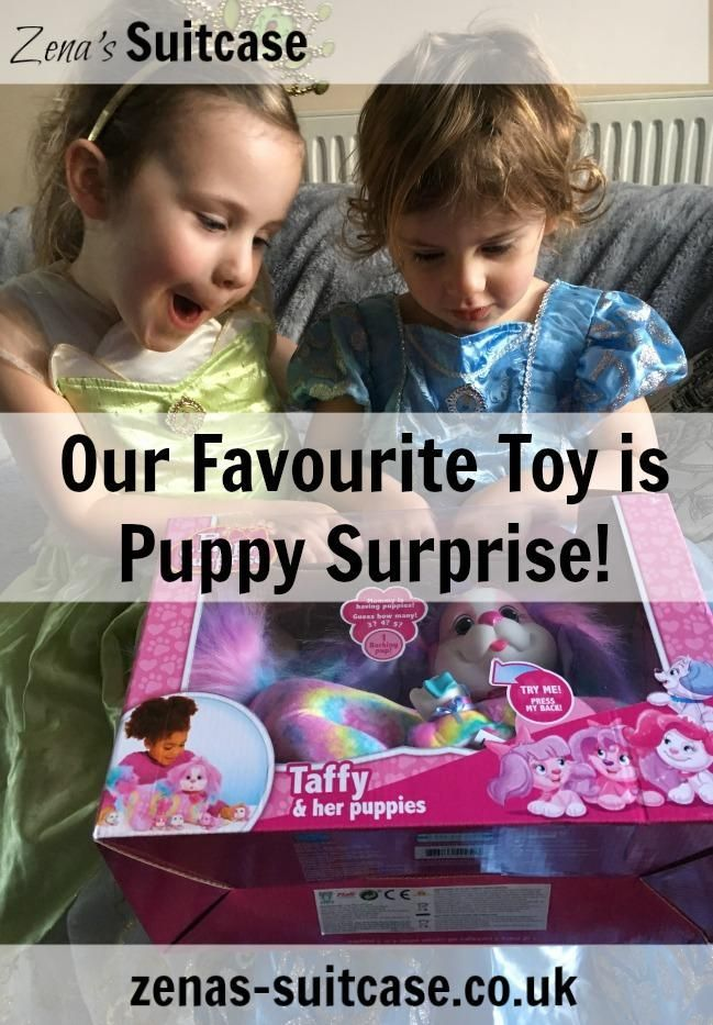 Review Our Favourite Toy is Puppy Surprise! Best pets