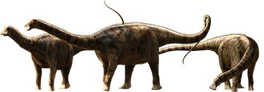 nigersaurus.jpg (530×186)