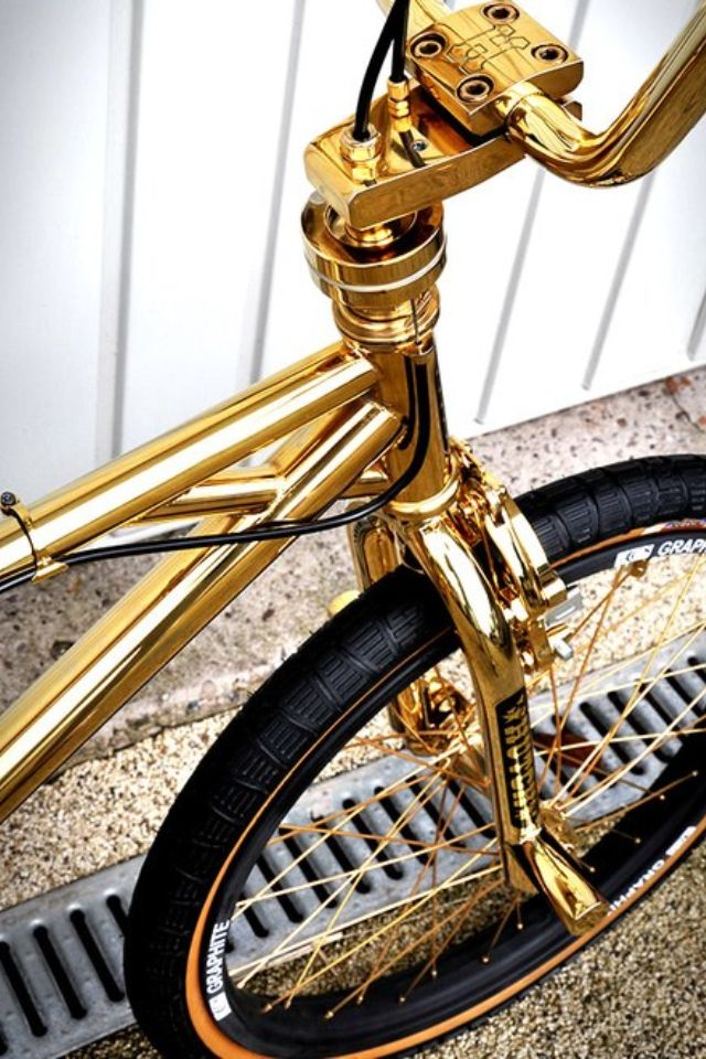 I Would Die For This Bike Regular Bike Spray Painted Gold