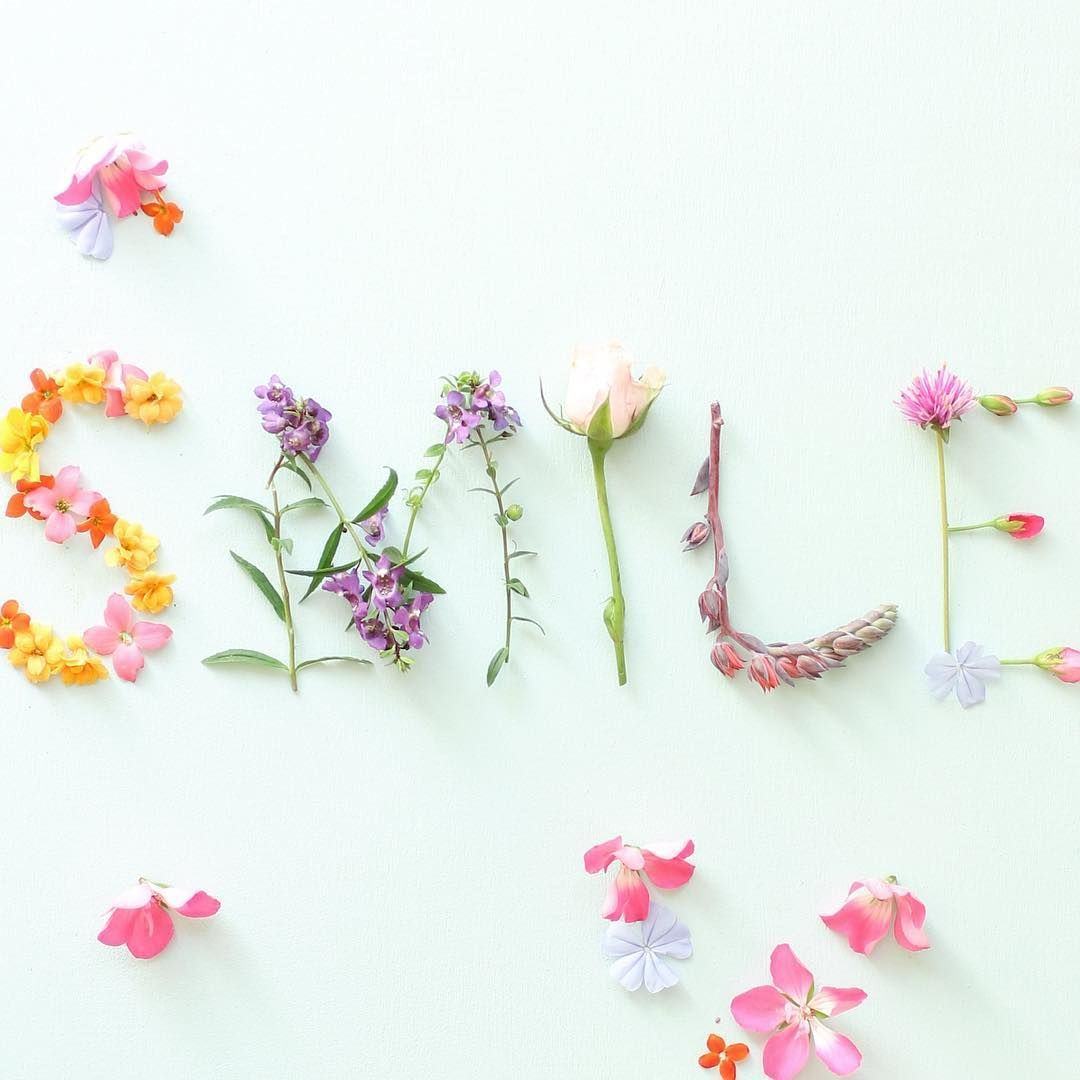 Pin by Ốc mít on art flower pinterest flowers flower and feelings