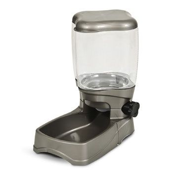 Petmate Food Dispenser Delectable Petmate Portion Right Pet Feeder  My Pet Dreamboard  Pinterest Review