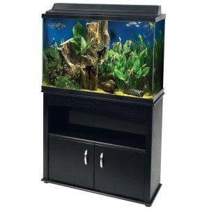 Aqueon 45 gallon aquarium ensemble with stand fish for Petsmart fish tank stand