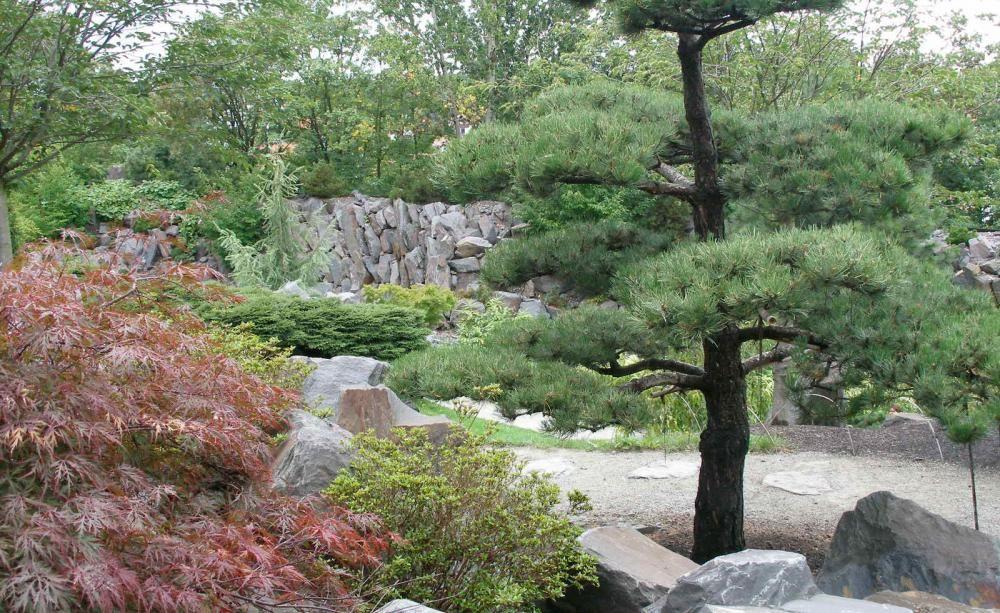 Cute Gartengestaltung nach Feng Shui