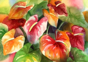 Anthuriums Coloring Pages Anthurium Coloring Page Stained Glass Flowers Coloring Pages Wine And Paint Night