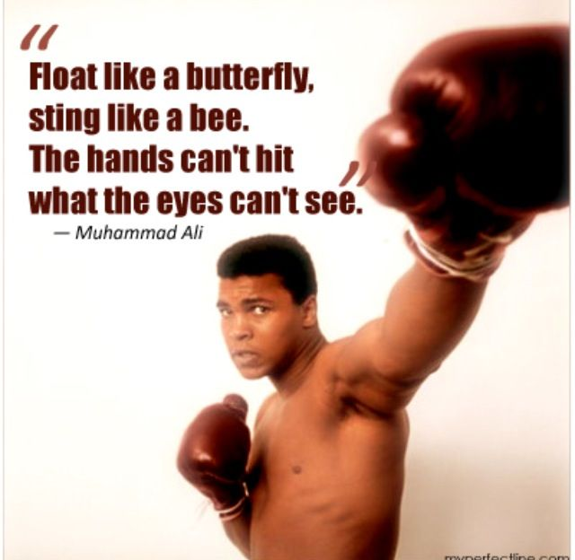 FLOAT LIKE A BUTTERFLY STING LIKE A BEE Motivational Quote Poster Boxing