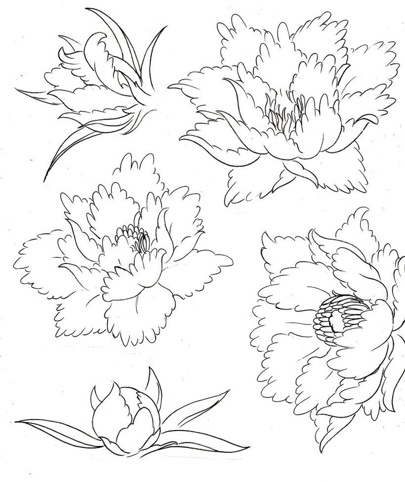 flower tattoo coloring pages | Color tattoos - Dibujos para colorear ...