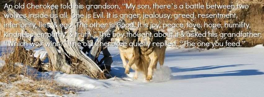 """An old Cherokee told his grandson, """"My son, there's a battle between two wolves inside us all. One is Evil. It is anger, jealousy, greed, resentment, inferiority, lies, & ego. The other is Good. It is joy, peace, love, hope, humility, kindness, empathy, & truth."""" The boy thought about it & asked his grandfather, """"Which wolf wins?"""" The old Cherokee quietly replied, """"The one you feed."""""""