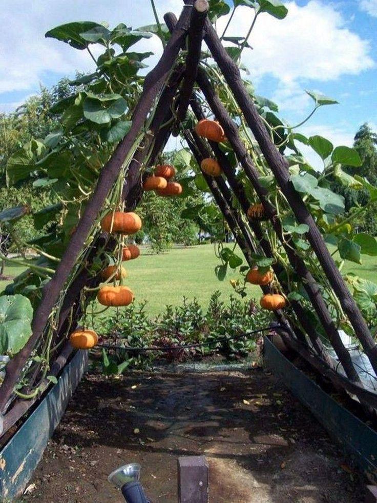 Photo of La madera de jardín de cama elevada más joven solo en Kennys Landsch – ideas de diseño de jardines