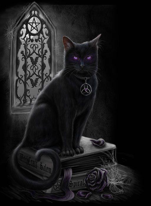 Witches Black Cat By Sheblackdragon On Deviantart Black Cat Art Magic Cat Cat Art