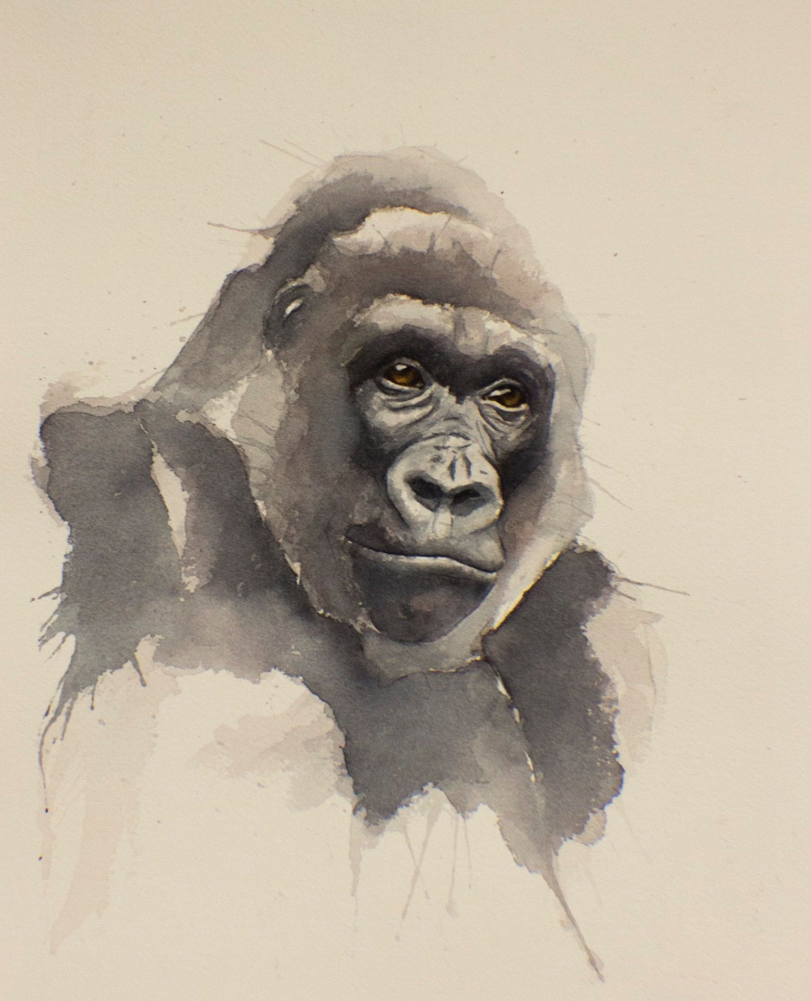 gorilla art print printing watercolor and animal