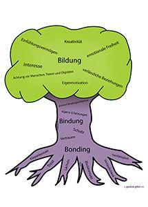 Bindungs Baum