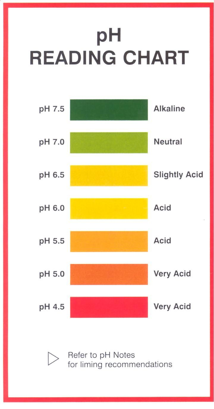 7 Natural Ph Balanced Neutral Shampoo List With