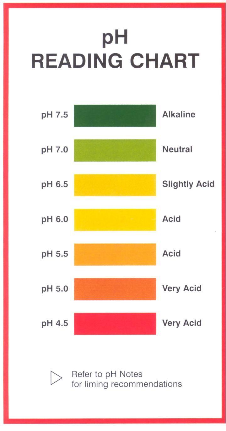 7 natural ph balanced neutral shampoo list with