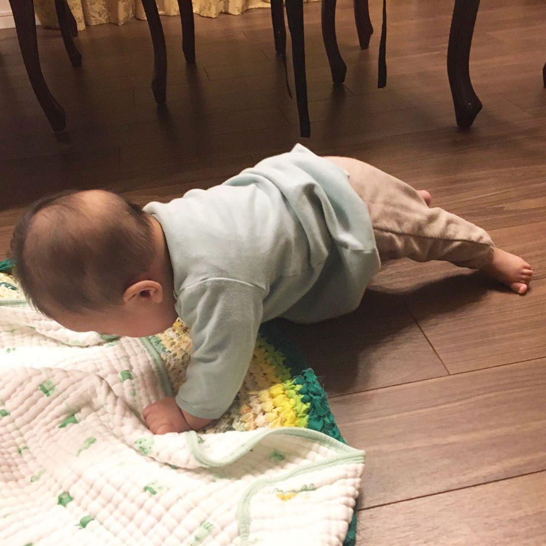 赤ちゃん ずり ばい いつ
