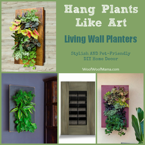 Hang Plants Like Wall Art: Stylish U0026 Pet Friendly DIY Idea