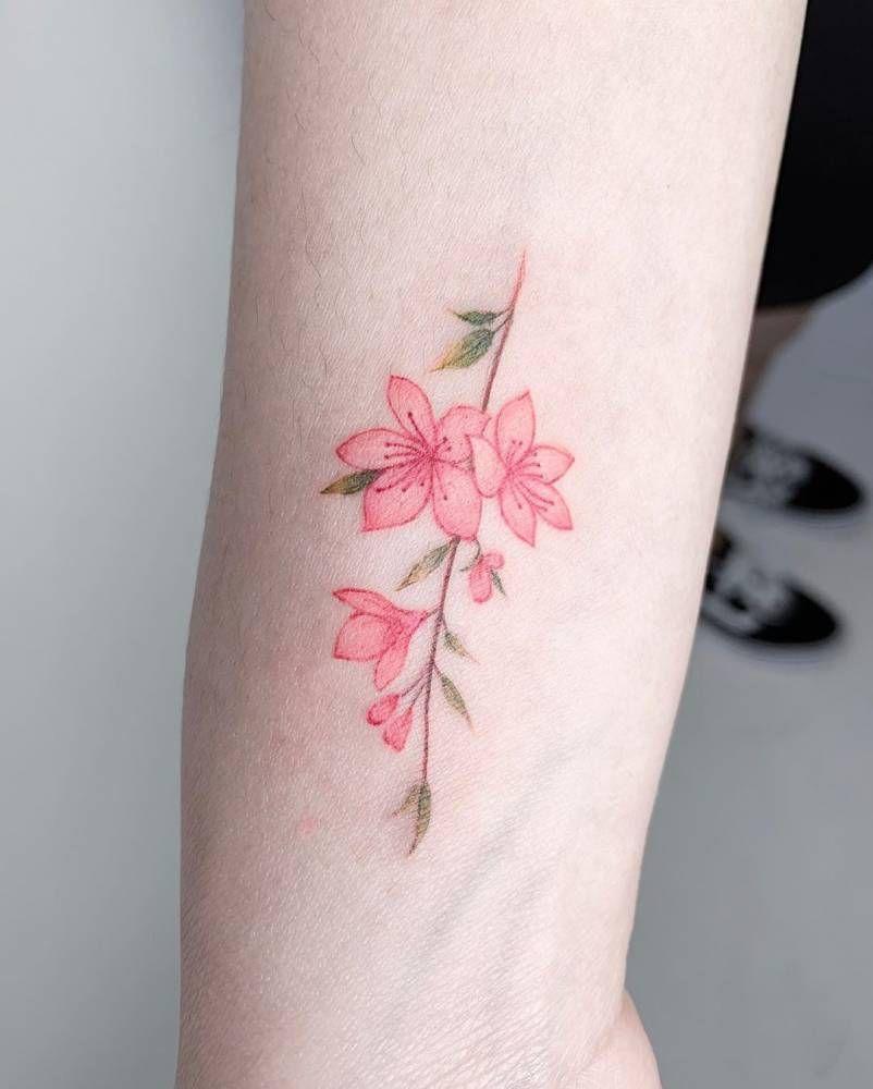 Instagram Photo By Analisbet Luna Fegan Apr 29 2016 At 11 12pm Utc Jazmin Flor Tatuaje De Jazmin Tatuajes De La Flor De Jazmin