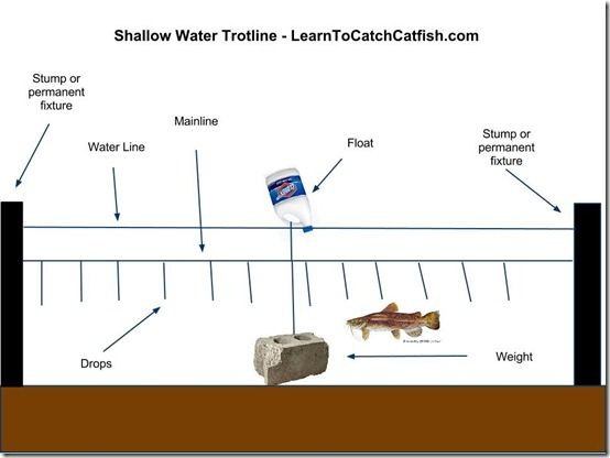 Catching Catfish With A Trotline How To Set A Trotline That Said