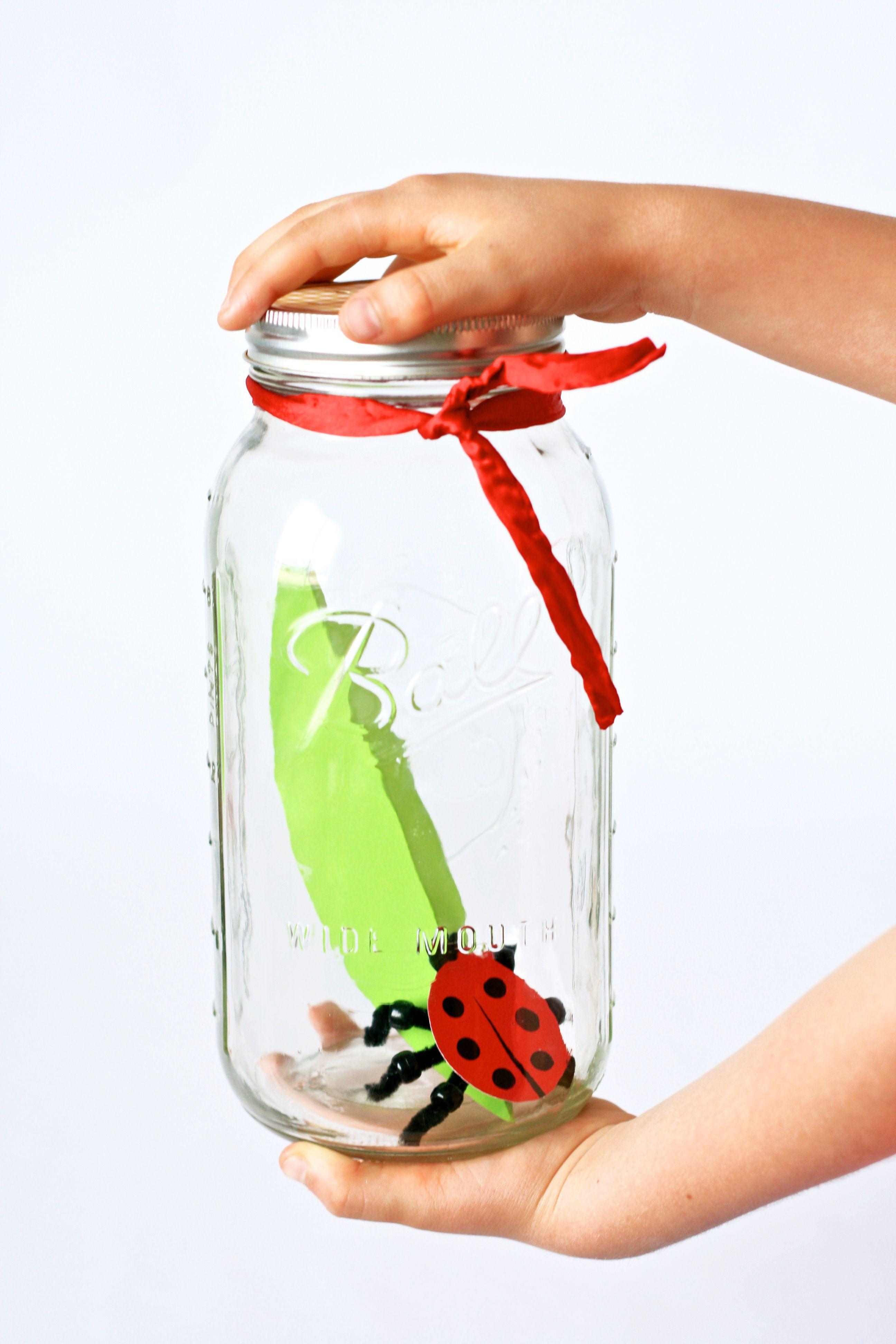Kids Crafts Make A Pet Ladybug