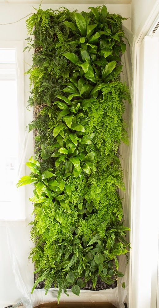 Great Diy Greenwall Info In Danish With Images Wall Garden