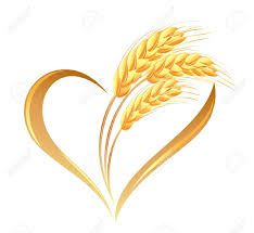 Buğday Başağı Dövme Modelleri Ile Ilgili Görsel Sonucu Takı
