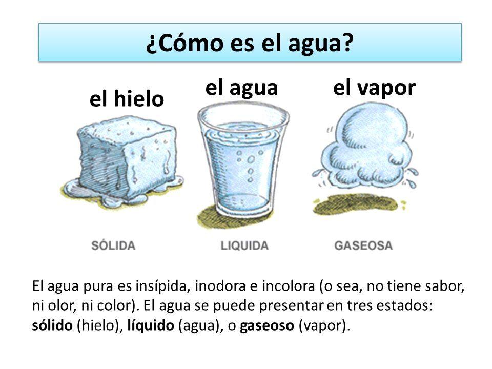 Resultado De Imagen Para Estados Fisicos Del Agua Dibujos Estados Fisicos Del Agua Gaseoso Dia Mundial Del Agua