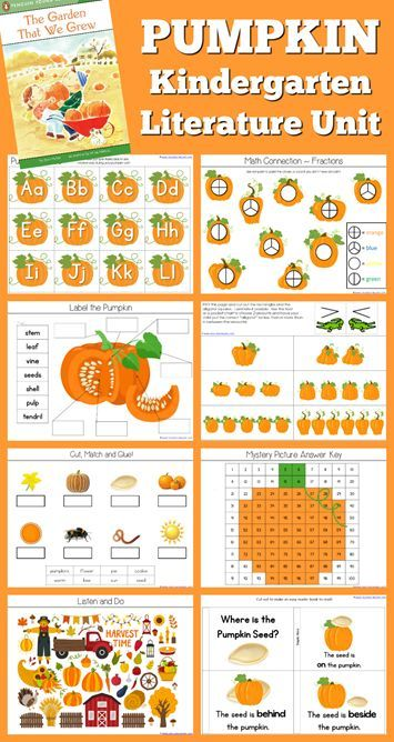 Pumpkin Theme Kindergarten Literature Unit