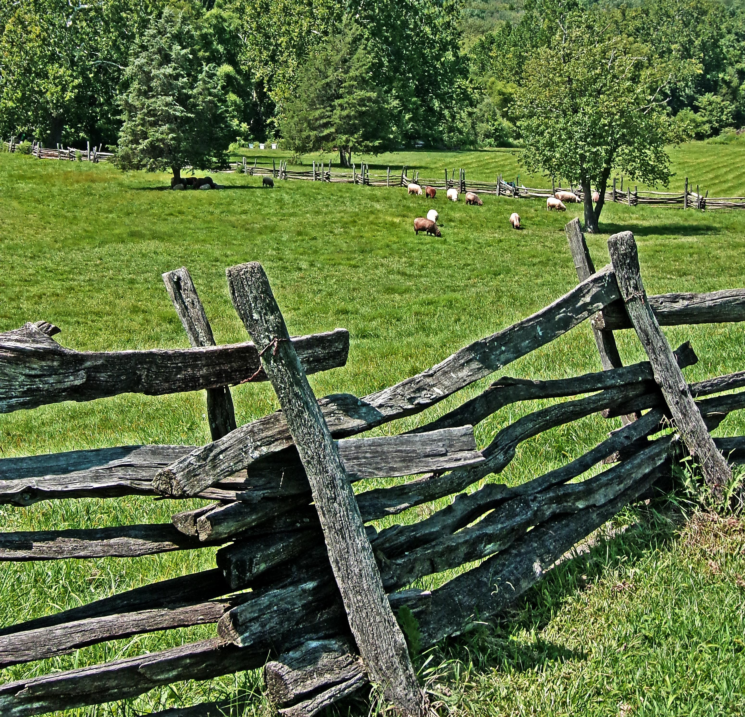 Snake Rail Fence Rail Fence Fence Outdoor