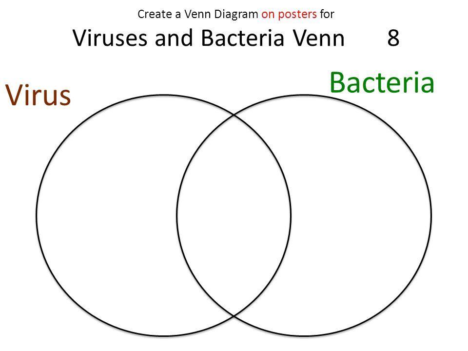 virus venn diagram romeo landinez co rh romeo landinez co archaea vs bacteria venn diagram virus