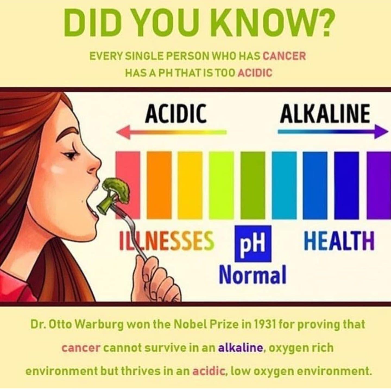 Alkaline Diet Warburg Cancer Natural Medicine