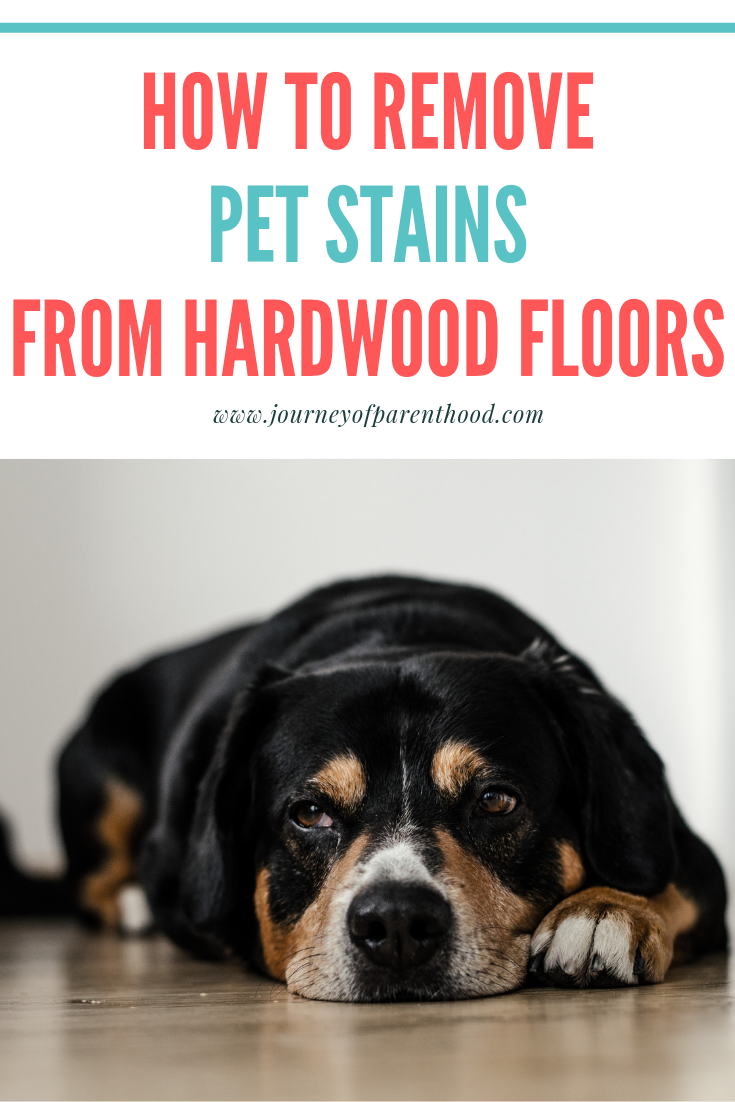 Removing Pet Stains from Hardwood Floors Stains