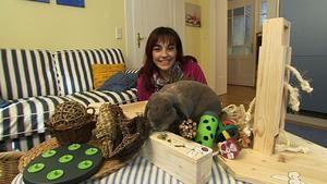 Diana Eichhorn stellt Kaninchenspielzeuge vor Kaninchen