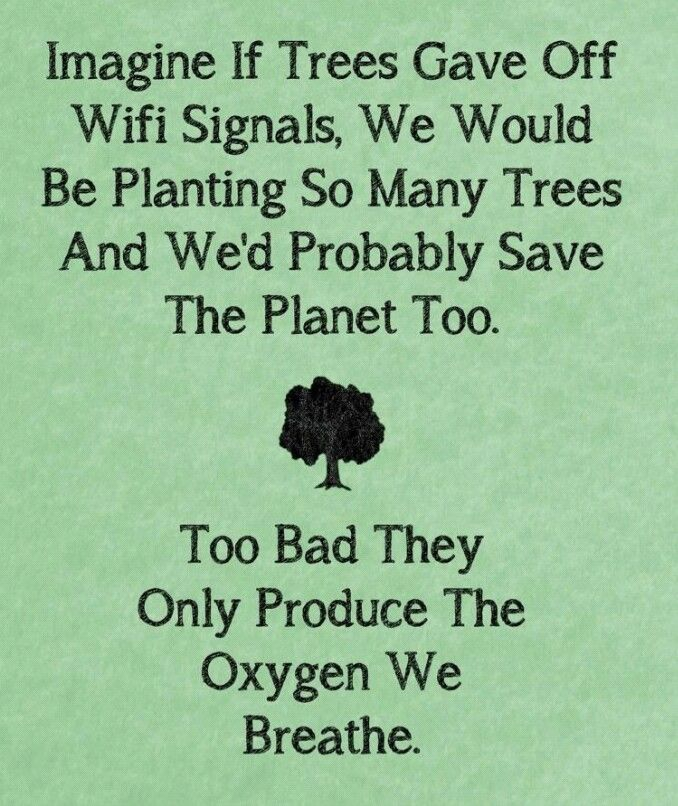 Wow..plant a tree today!