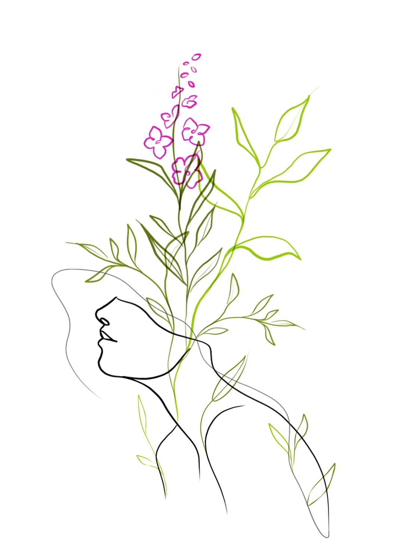 Photo of Flowerhead Animation Line Art
