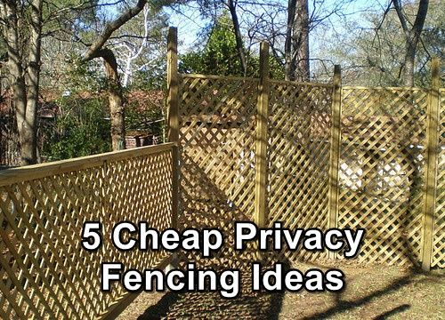 5 Cheap Privacy Fencing Ideas