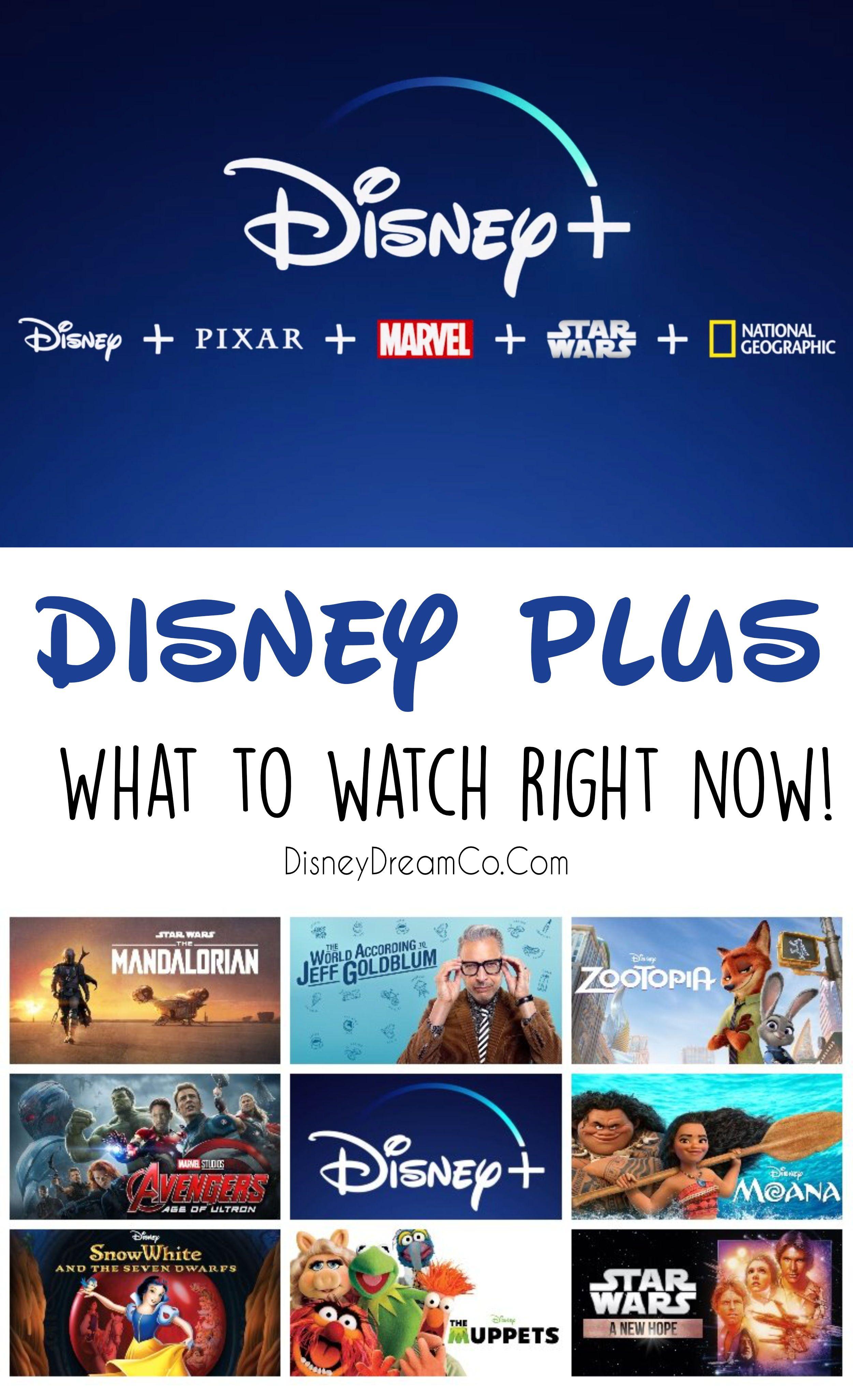 Disney + What to Watch in 2020 Disney plus, Disney world
