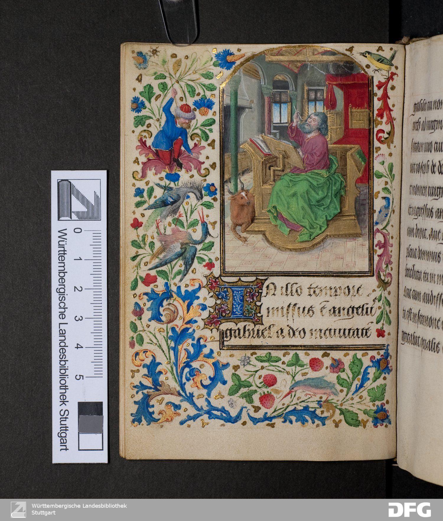 Pin Rosie Loves . Illuminated Manuscripts