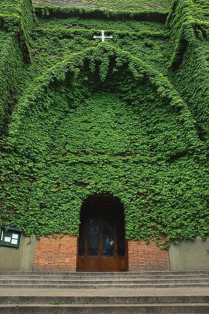 ivy church portal