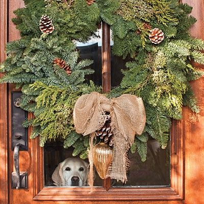 Love the dog peeking out - Christmas - the best season of all I