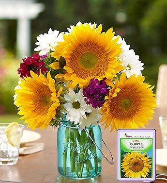 Bring A Little Extra Cheer To Birthdays Anniversaries Or Any Occasion With Our Sunflower Medley Part Of The Sunflower Spectacular This Sunflower Arrangement