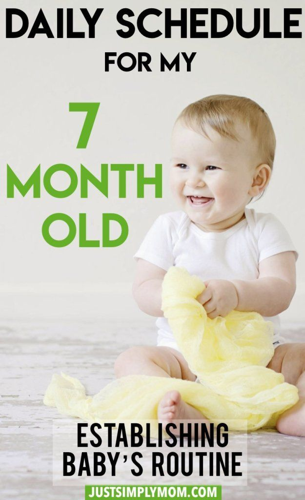 what foods should a 7 month old be eating