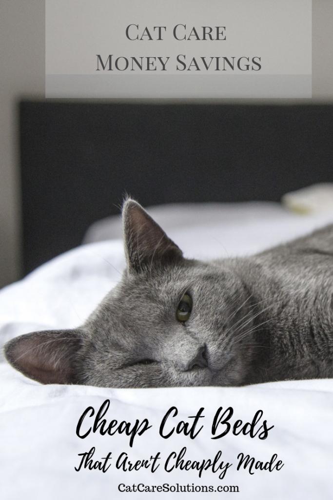 7 Cheap Cat Beds That Aren't Cheaply Made Cheap cat beds