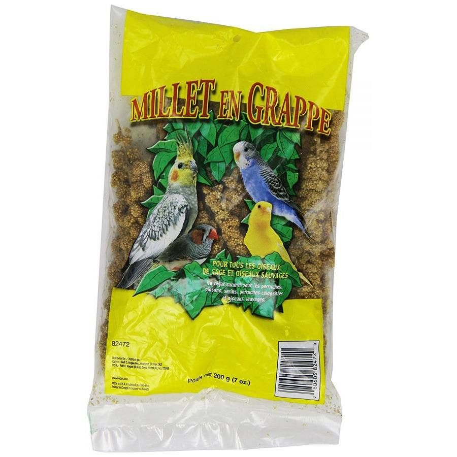 Living World Spray Millet Is A Popular Premium Bird Treat For All Seed Eating Birds This Highly Palatable Millet Spray Is A St Bird Treats Millet Treat Recipe