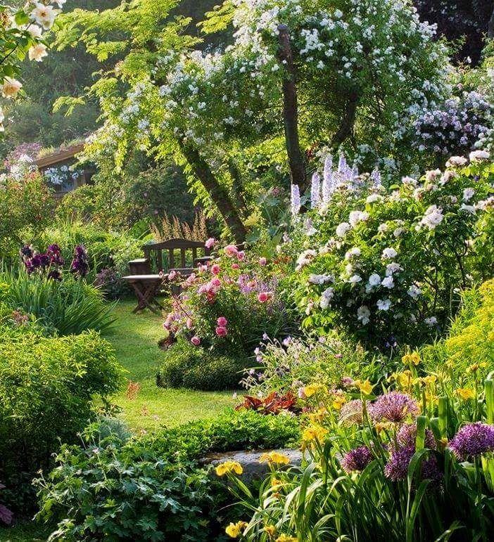 English Cottage Garden.   English cottage gardens   Pinterest ...
